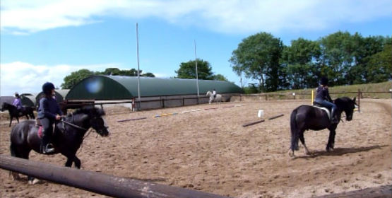 Sheans horse riding school
